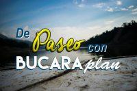 Logo BucaraPlan