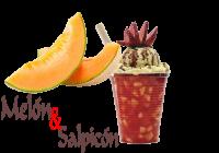 Melon Y Salpicon Logo